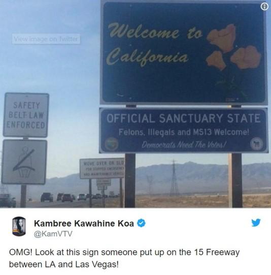 CA sanctuary state.jpg